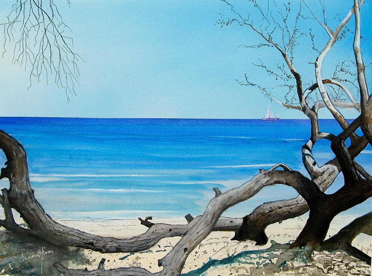 Corse - La plage de Saleccia